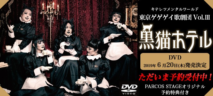 東京ゲゲゲイ歌劇団 vol.3「黒猫ホテル」[DVD]