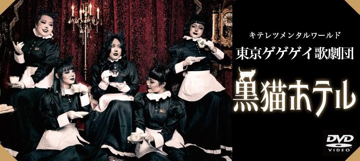 東京ゲゲゲイ歌劇団「黒猫ホテル」[DVD]